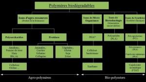 polymères biodégradables