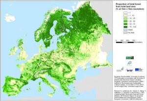 industrie bois Autriche